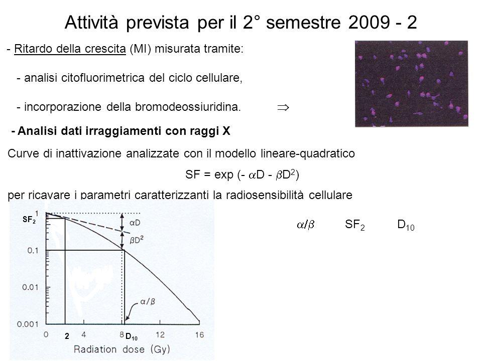 Attività prevista per il 2° semestre 2009 - 2 - Ritardo della crescita (MI) misurata tramite: - analisi citofluorimetrica del ciclo cellulare, - incor