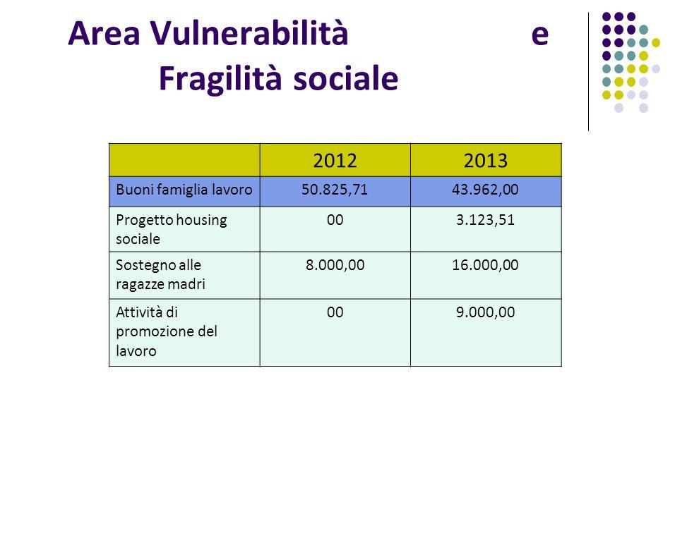 Area Vulnerabilità e Fragilità sociale 20122013 Buoni famiglia lavoro50.825,7143.962,00 Progetto housing sociale 003.123,51 Sostegno alle ragazze madri 8.000,0016.000,00 Attività di promozione del lavoro 009.000,00