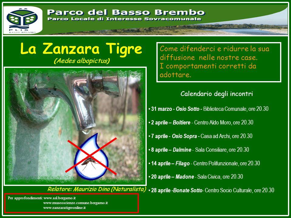 La Zanzara Tigre (Aedes albopictus) Come difenderci e ridurre la sua diffusione nelle nostre case. I comportamenti corretti da adottare. Calendario de