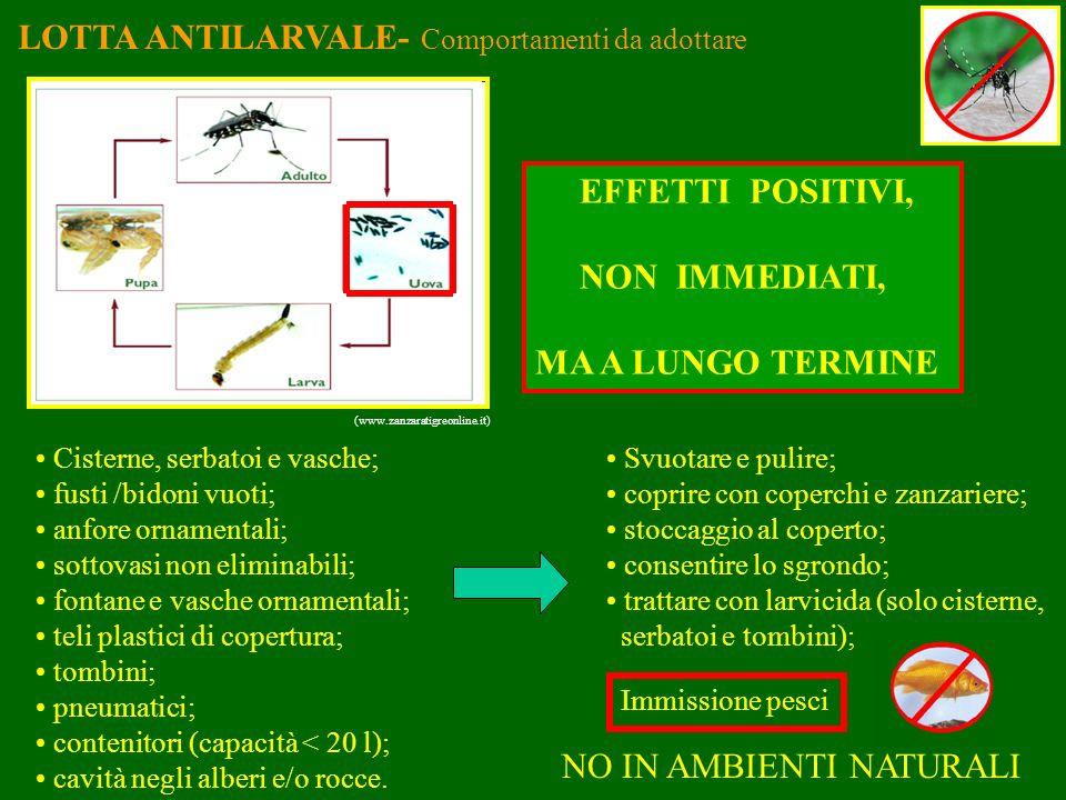 LOTTA ANTILARVALE- Comportamenti da adottare (www.zanzaratigreonline.it) Cisterne, serbatoi e vasche; fusti /bidoni vuoti; anfore ornamentali; sottova