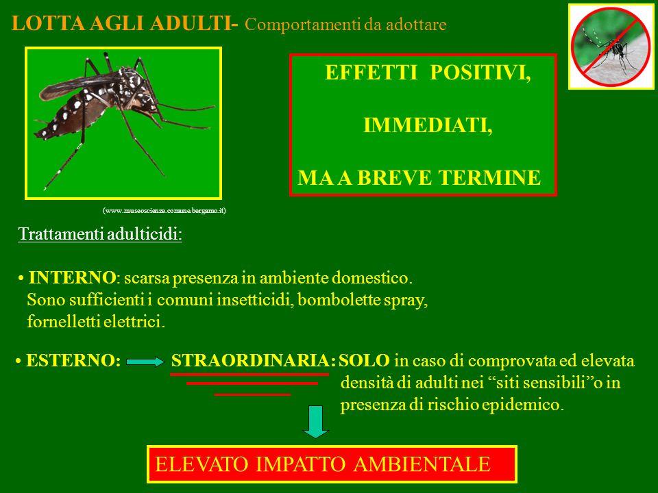 LOTTA AGLI ADULTI- Comportamenti da adottare (www.museoscienze.comune.bergamo.it) Trattamenti adulticidi: INTERNO: scarsa presenza in ambiente domesti