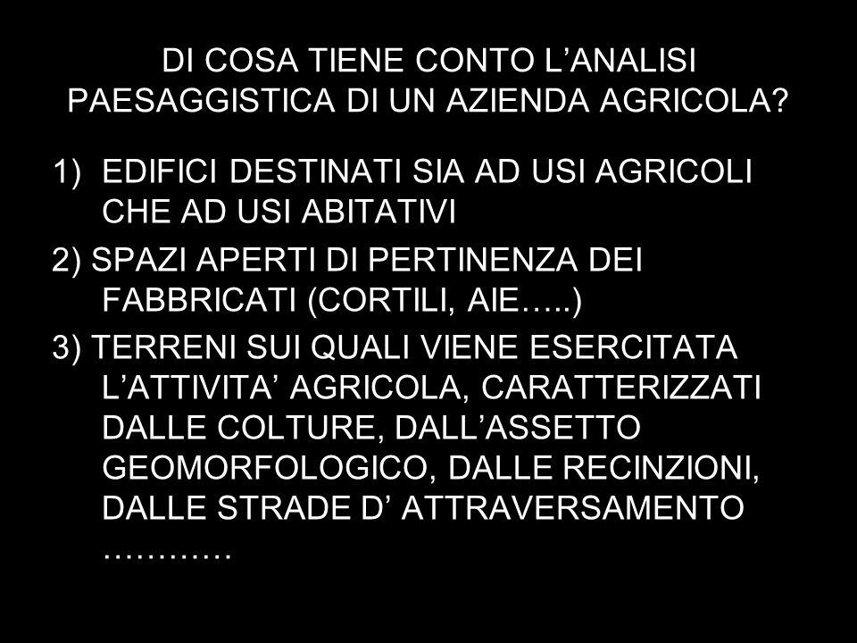 DI COSA TIENE CONTO LANALISI PAESAGGISTICA DI UN AZIENDA AGRICOLA.