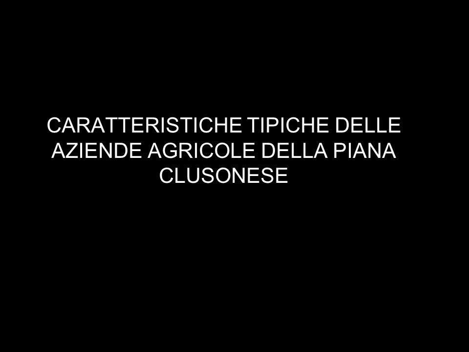 CARATTERISTICHE TIPICHE DELLE AZIENDE AGRICOLE DELLA PIANA CLUSONESE