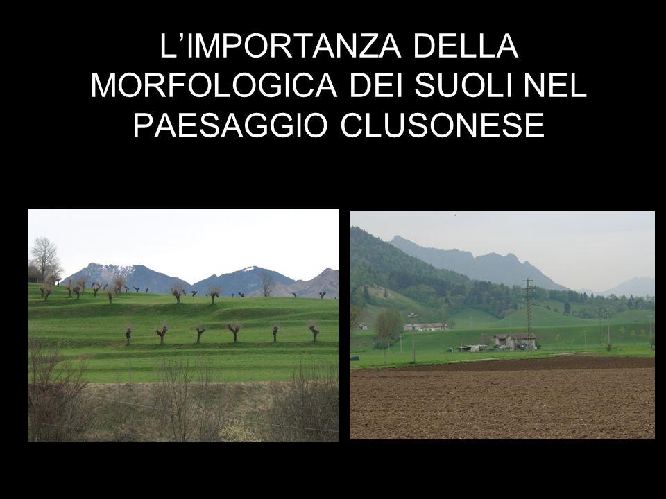 LIMPORTANZA DELLA MORFOLOGICA DEI SUOLI NEL PAESAGGIO CLUSONESE