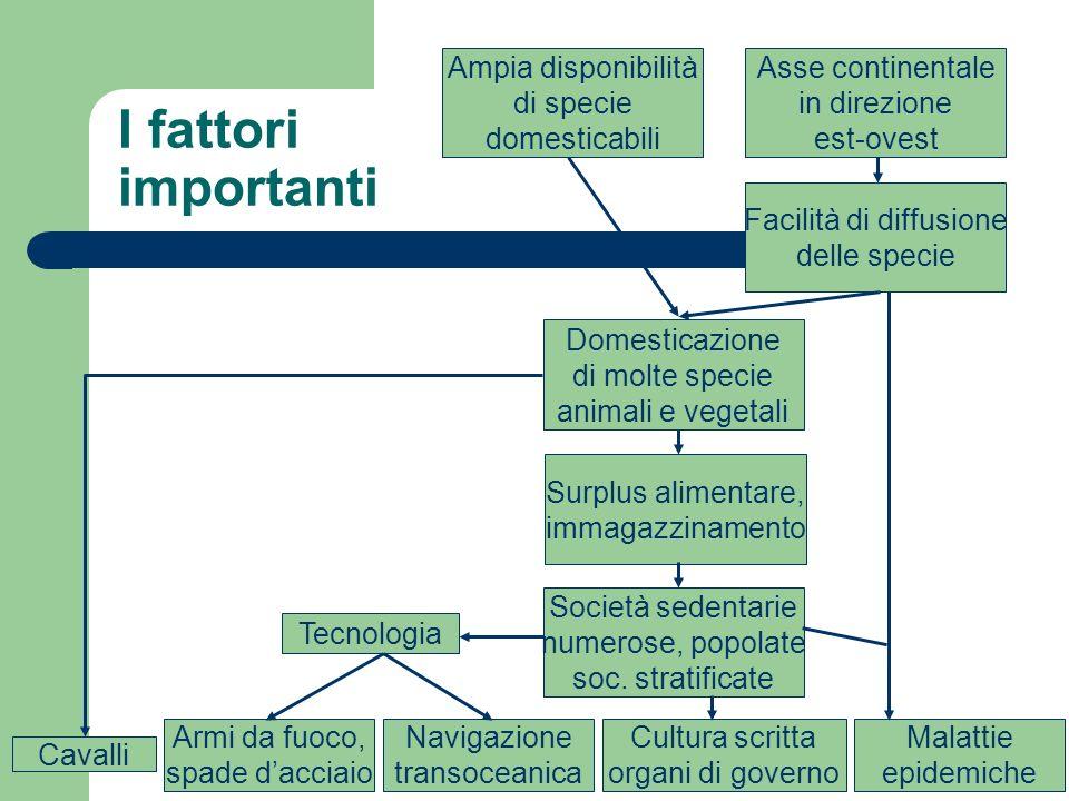 I fattori importanti Asse continentale in direzione est-ovest Facilità di diffusione delle specie Ampia disponibilità di specie domesticabili Domestic