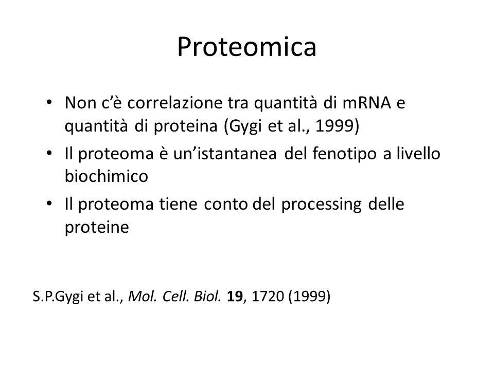Proteomica Non cè correlazione tra quantità di mRNA e quantità di proteina (Gygi et al., 1999) Il proteoma è unistantanea del fenotipo a livello bioch