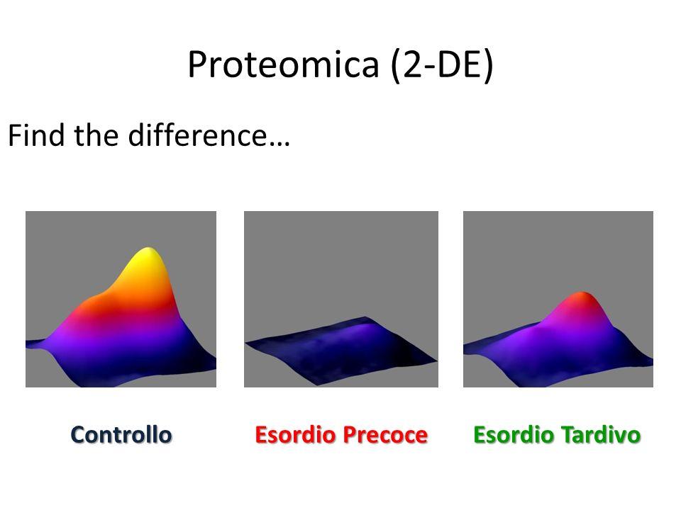 Proteomica (2-DE) Find the difference… Controllo Esordio Precoce Esordio Tardivo