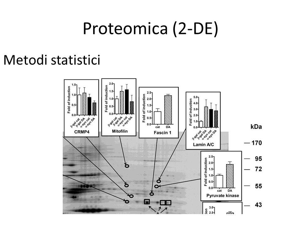 Proteomica (2-DE) Metodi statistici