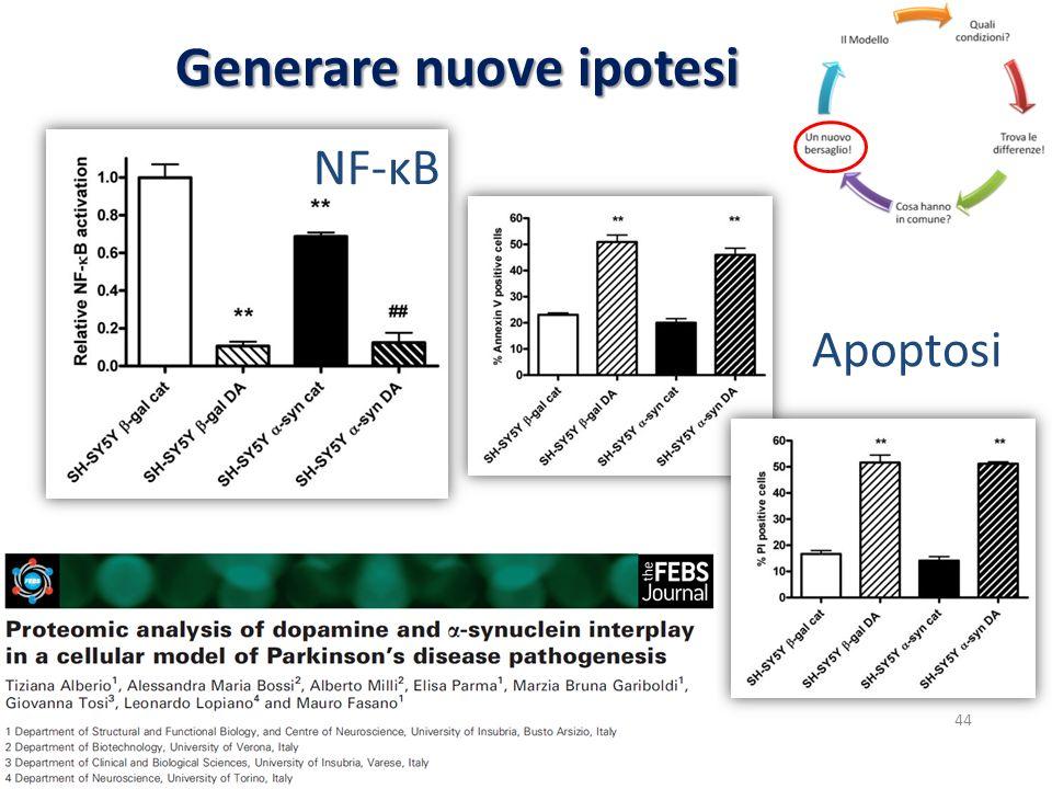 Generare nuove ipotesi NF-κB Apoptosi 44