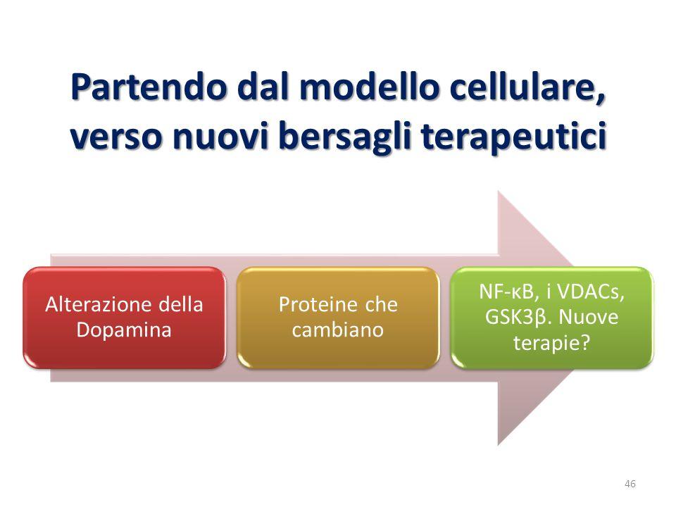 Partendo dal modello cellulare, verso nuovi bersagli terapeutici Alterazione della Dopamina Proteine che cambiano NF-κB, i VDACs, GSK3β. Nuove terapie