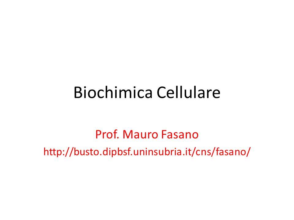 Biochimica Cellulare Prof. Mauro Fasano http://busto.dipbsf.uninsubria.it/cns/fasano/