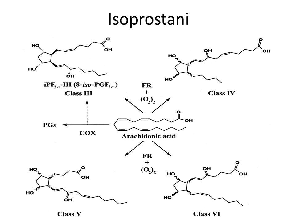 Isoprostani