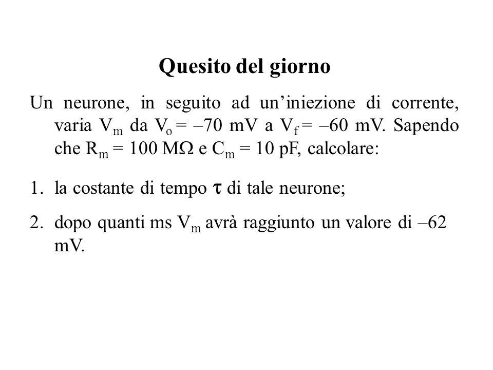 Quesito del giorno Un neurone, in seguito ad uniniezione di corrente, varia V m da V o = –70 mV a V f = –60 mV. Sapendo che R m = 100 M e C m = 10 pF,