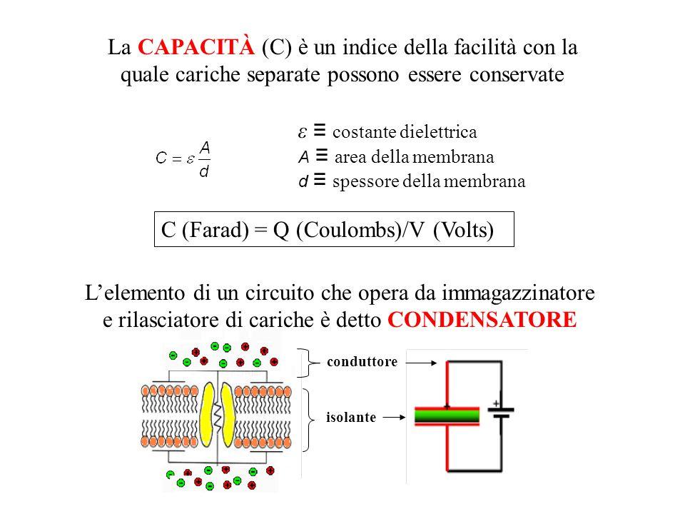 La CAPACITÀ (C) è un indice della facilità con la quale cariche separate possono essere conservate C (Farad) = Q (Coulombs)/V (Volts) Lelemento di un