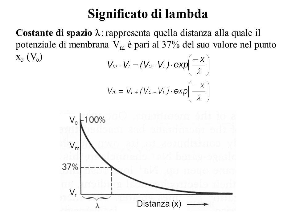 Costante di spazio : rappresenta quella distanza alla quale il potenziale di membrana V m è pari al 37% del suo valore nel punto x o (V o ) Significat