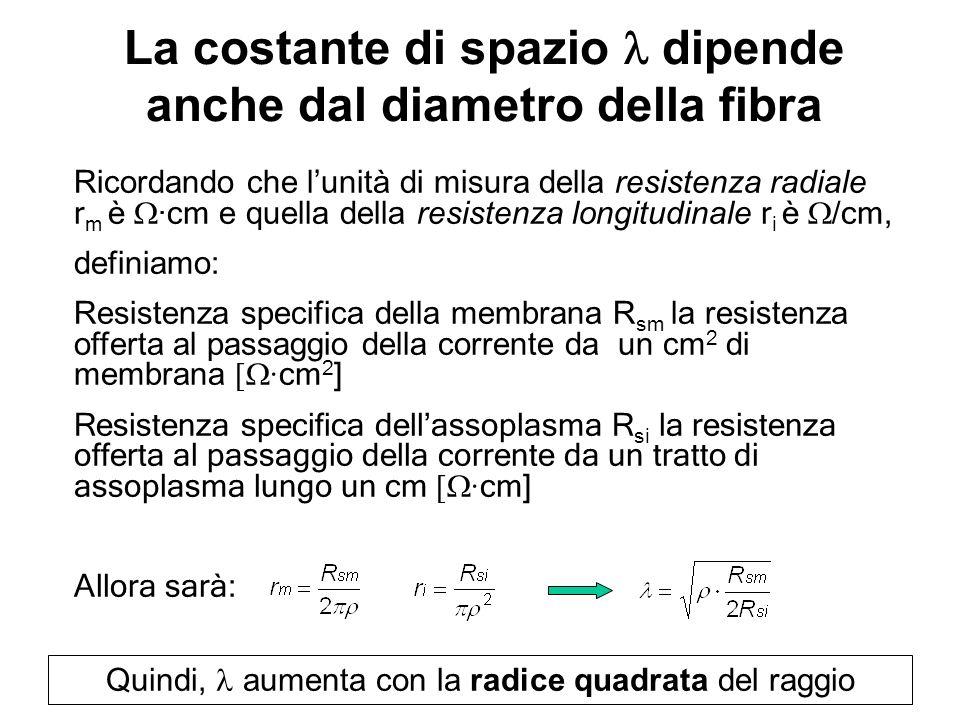 La costante di spazio dipende anche dal diametro della fibra Quindi, aumenta con la radice quadrata del raggio Ricordando che lunità di misura della r