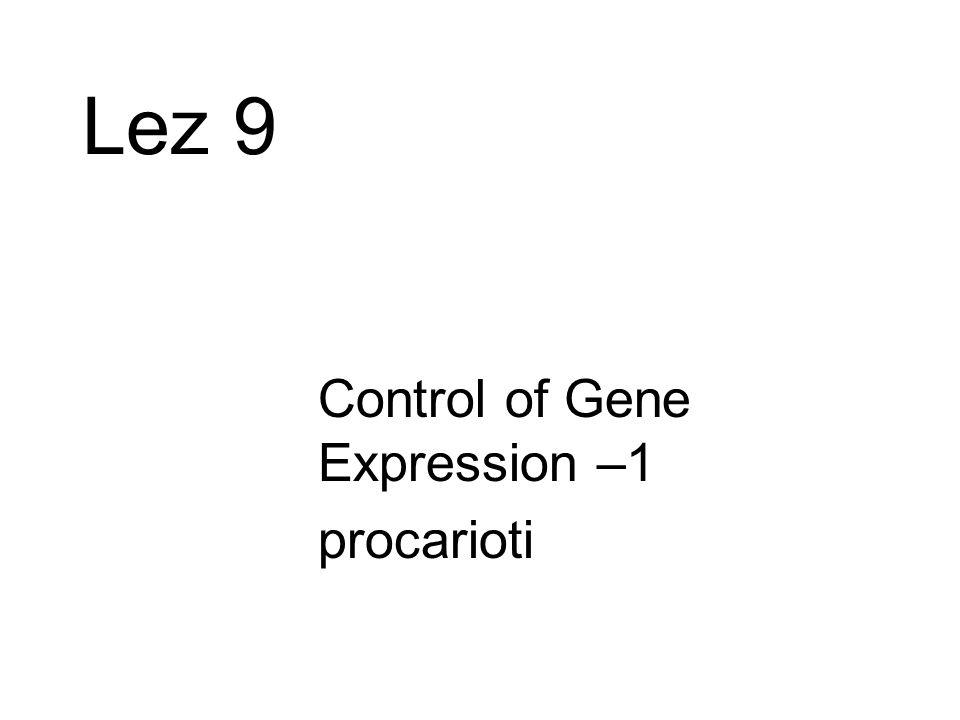 Lez 9 Control of Gene Expression –1 procarioti