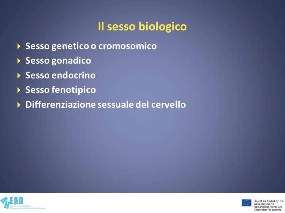 Il sesso biologico Sesso genetico o cromosomico Sesso gonadico Sesso endocrino Sesso fenotipico Differenziazione sessuale del cervello