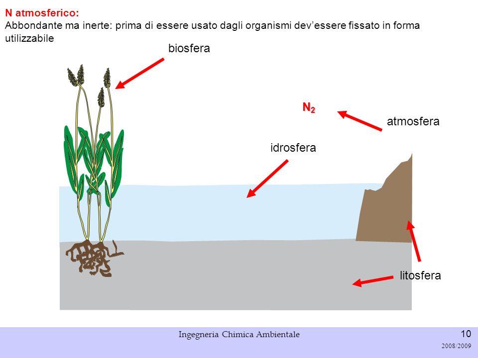 Università di Padova LASA – Laboratorio di Analisi dei Sistemi ambientali Ingegneria Chimica Ambientale 10 2008/2009 N2N2N2N2 N atmosferico: Abbondant