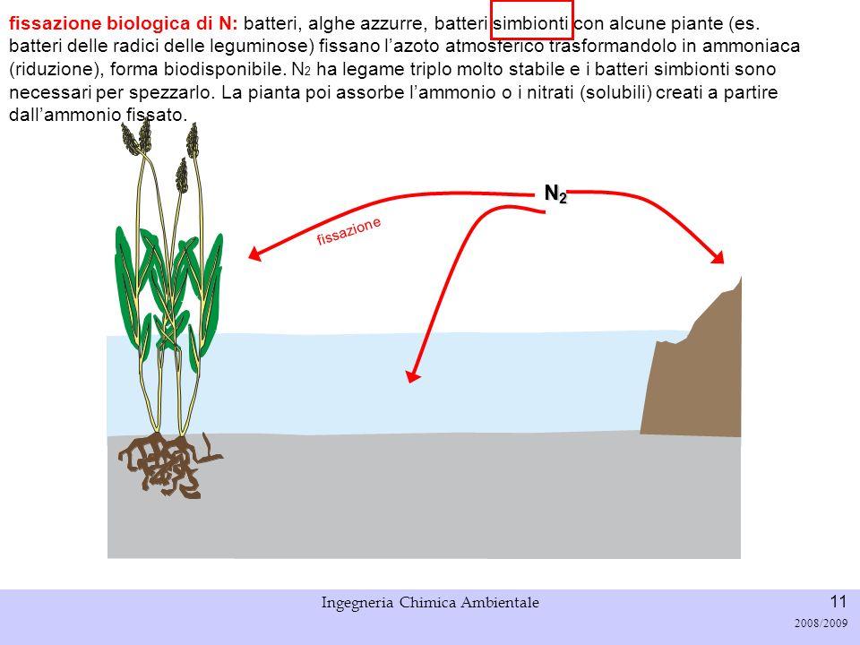 Università di Padova LASA – Laboratorio di Analisi dei Sistemi ambientali Ingegneria Chimica Ambientale 11 2008/2009 fissazione N2N2N2N2 fissazione bi