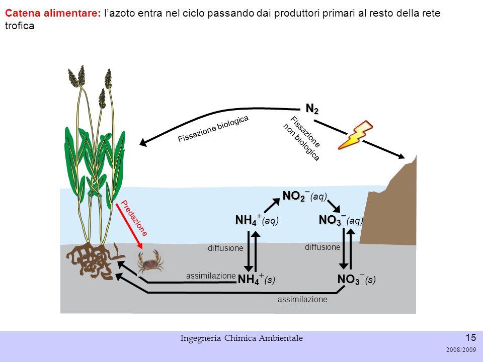 Università di Padova LASA – Laboratorio di Analisi dei Sistemi ambientali Ingegneria Chimica Ambientale 15 2008/2009 Fissazione biologica N2N2N2N2 Cat