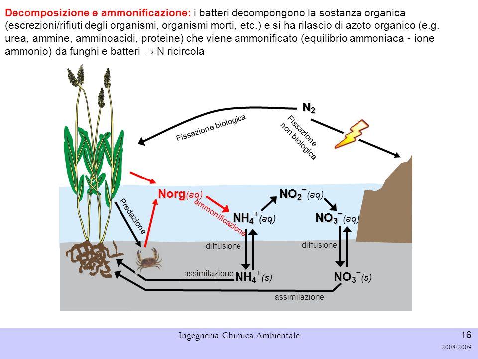 Università di Padova LASA – Laboratorio di Analisi dei Sistemi ambientali Ingegneria Chimica Ambientale 16 2008/2009 Fissazione biologica N2N2N2N2 Dec