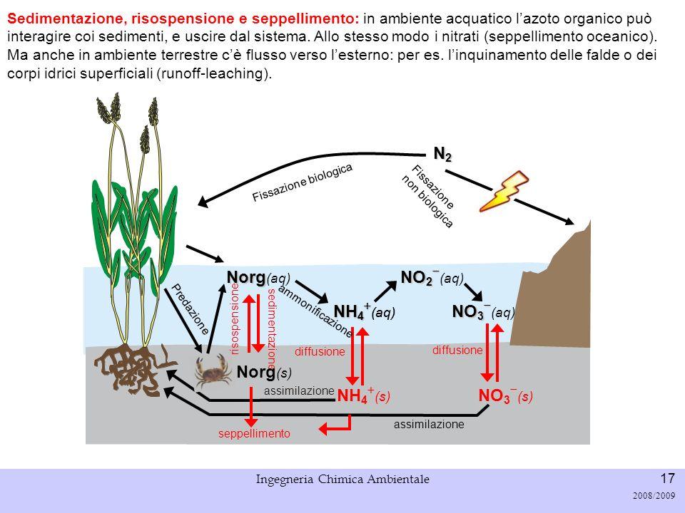 Università di Padova LASA – Laboratorio di Analisi dei Sistemi ambientali Ingegneria Chimica Ambientale 17 2008/2009 Fissazione biologica N2N2N2N2 Sed