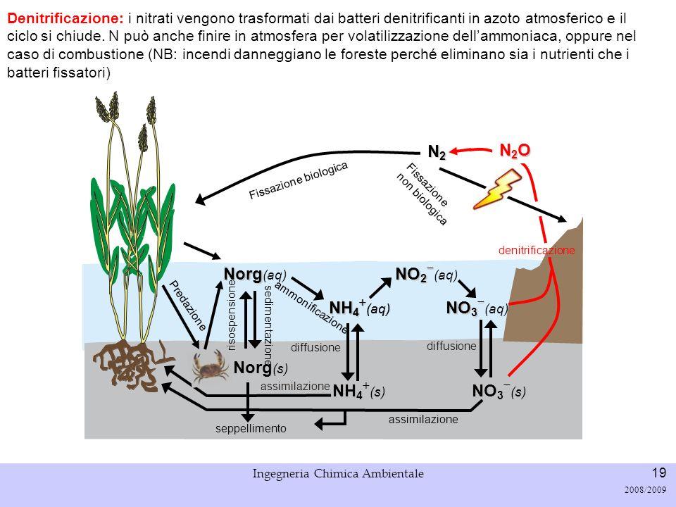 Università di Padova LASA – Laboratorio di Analisi dei Sistemi ambientali Ingegneria Chimica Ambientale 19 2008/2009 Fissazione biologica N2N2N2N2 Den