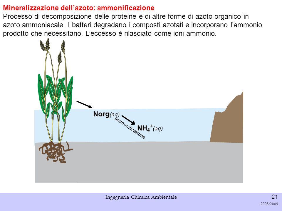 Università di Padova LASA – Laboratorio di Analisi dei Sistemi ambientali Ingegneria Chimica Ambientale 21 2008/2009 Mineralizzazione dellazoto: ammon