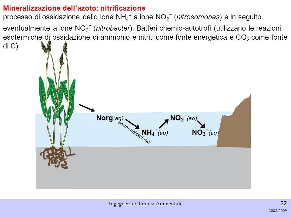 Università di Padova LASA – Laboratorio di Analisi dei Sistemi ambientali Ingegneria Chimica Ambientale 22 2008/2009 Mineralizzazione dellazoto: nitri