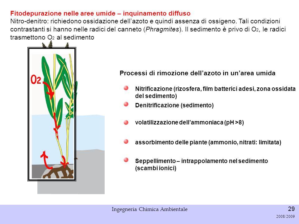 Università di Padova LASA – Laboratorio di Analisi dei Sistemi ambientali Ingegneria Chimica Ambientale 29 2008/2009 Fitodepurazione nelle aree umide