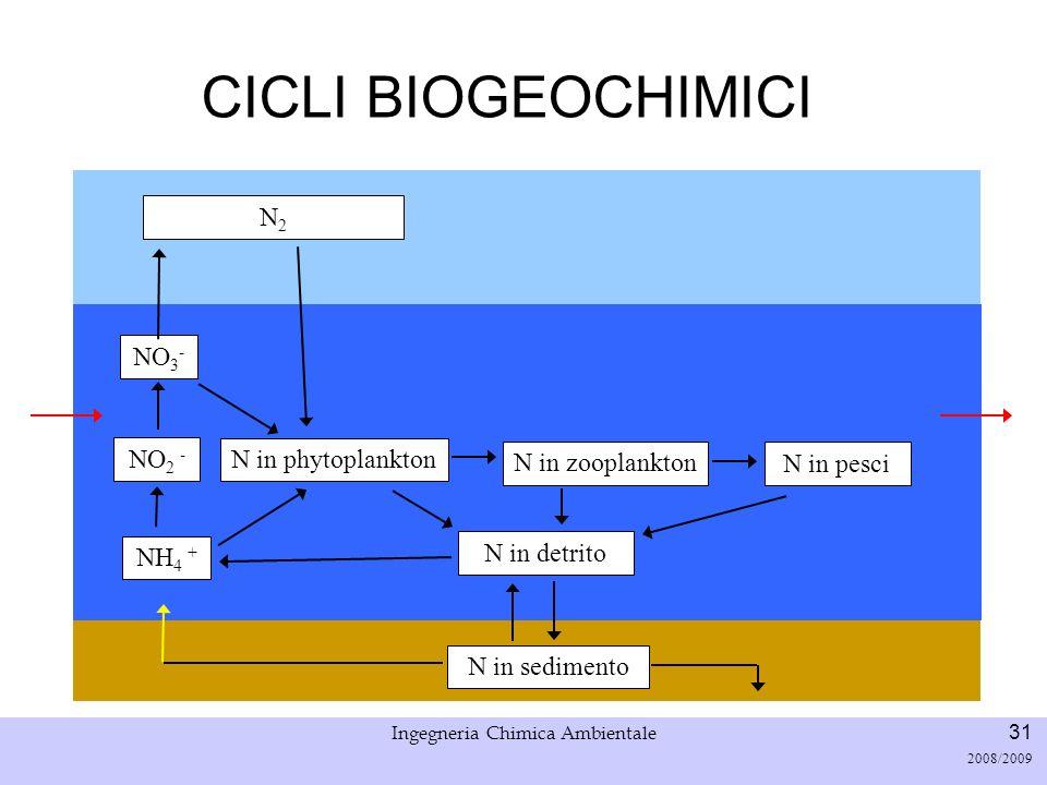 Università di Padova LASA – Laboratorio di Analisi dei Sistemi ambientali Ingegneria Chimica Ambientale 31 2008/2009 CICLI BIOGEOCHIMICI NH 4 + NO 2 -