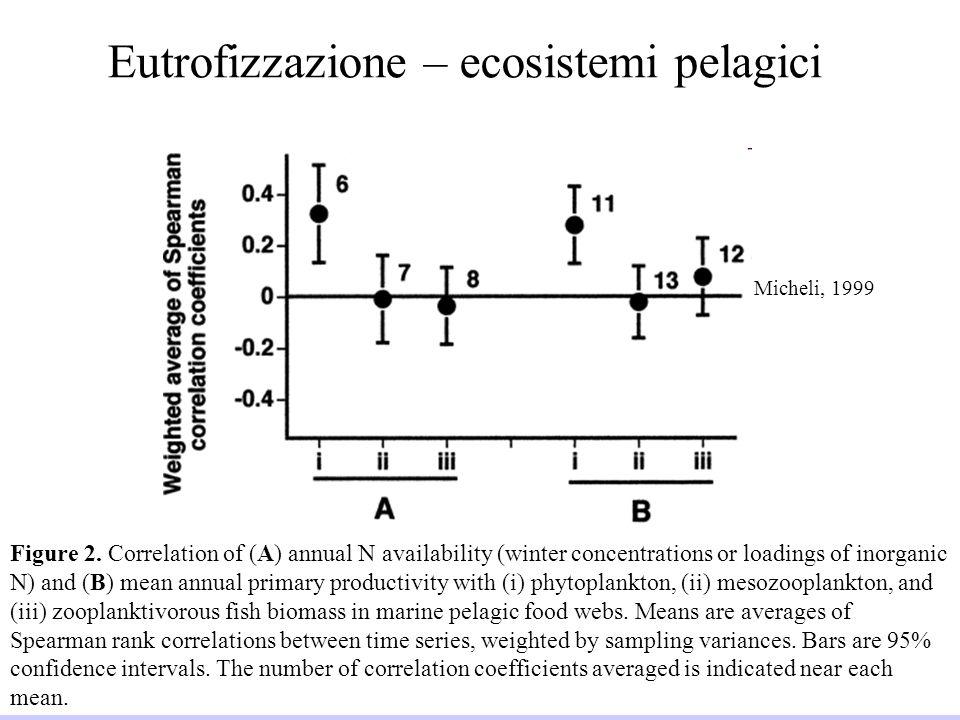 Università di Padova LASA – Laboratorio di Analisi dei Sistemi ambientali Ingegneria Chimica Ambientale 33 2008/2009 Eutrofizzazione – ecosistemi pela