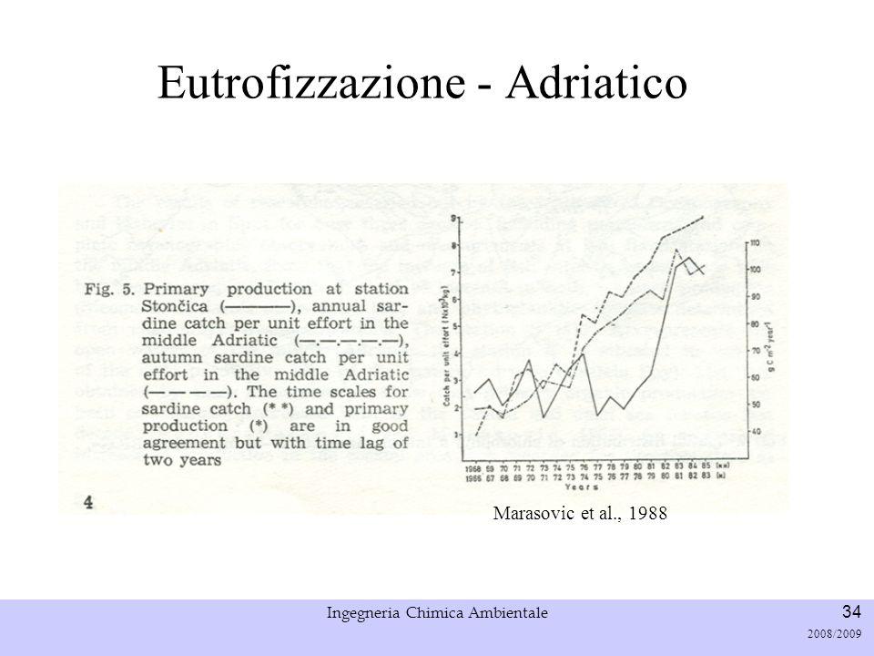 Università di Padova LASA – Laboratorio di Analisi dei Sistemi ambientali Ingegneria Chimica Ambientale 34 2008/2009 Eutrofizzazione - Adriatico Maras