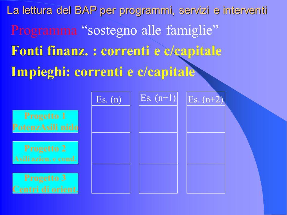 La lettura del BAP per programmi, servizi e interventi Programma sostegno alle famiglie Fonti finanz.