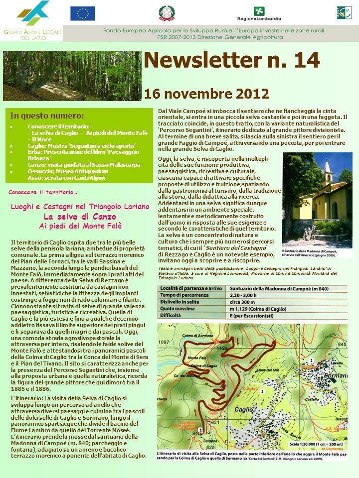 Newsletter n. 14 16 novembre 2012 In questo numero: Conoscere il territorio: - La selva di Caglio – Ai piedi del Monte Falò - Il Noce Caglio: Mostra S