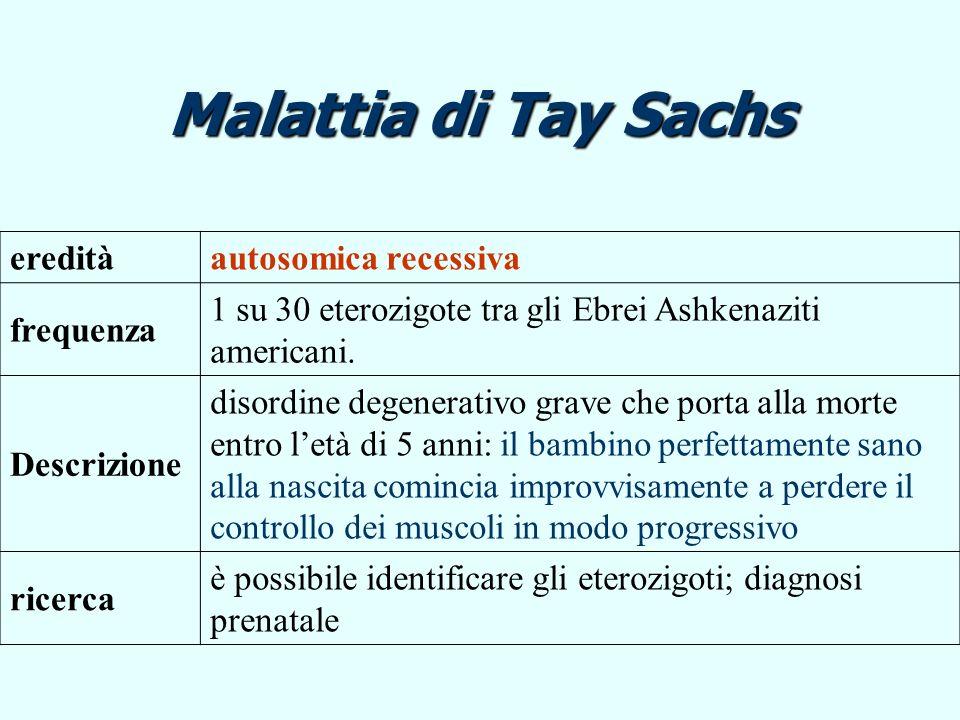 Malattia di Tay Sachs ereditàautosomica recessiva frequenza 1 su 30 eterozigote tra gli Ebrei Ashkenaziti americani. Descrizione disordine degenerativ