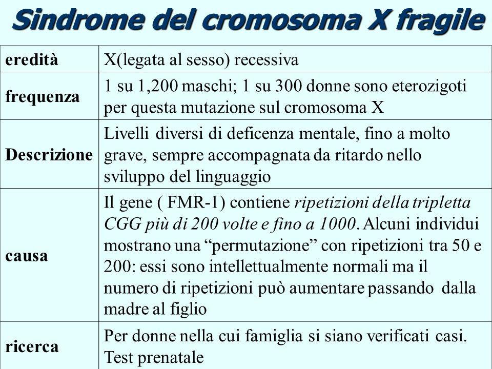 Sindrome del cromosoma X fragile ereditàX(legata al sesso) recessiva frequenza 1 su 1,200 maschi; 1 su 300 donne sono eterozigoti per questa mutazione