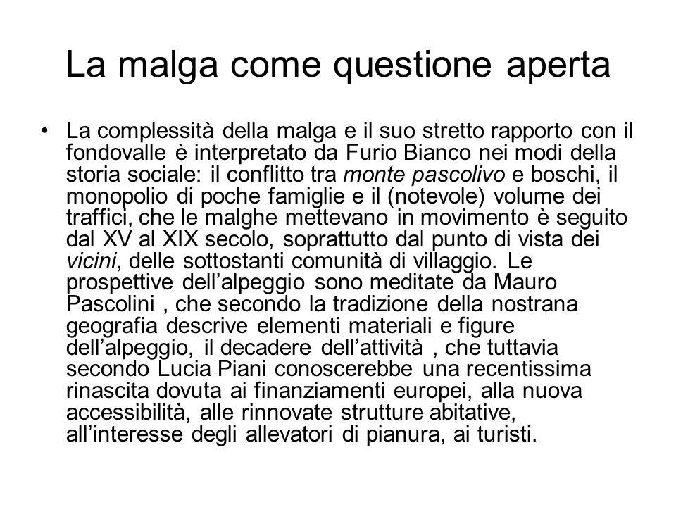 I luoghi come spazi differenziati Giorgio Ferigo, Mucche uomini erba …pp.
