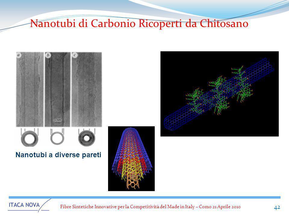 Fibre Sintetiche Innovative per la Competitività del Made in Italy – Como 21 Aprile 2010 42 Nanotubi a diverse pareti Nanotubi di Carbonio Ricoperti d