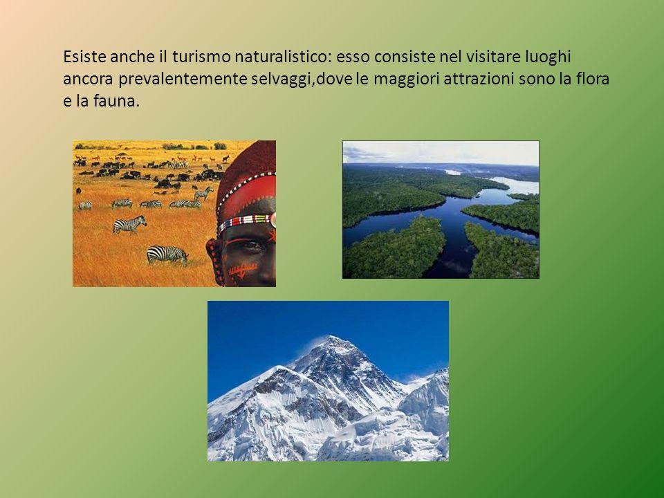Esiste anche il turismo naturalistico: esso consiste nel visitare luoghi ancora prevalentemente selvaggi,dove le maggiori attrazioni sono la flora e l