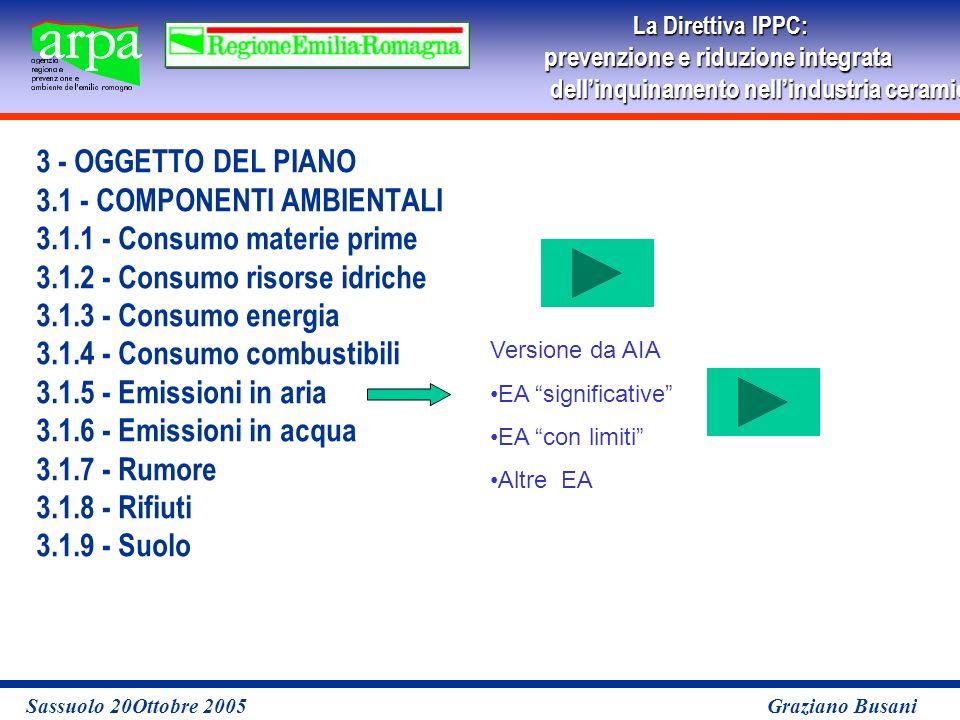 La Direttiva IPPC: prevenzione e riduzione integrata dellinquinamento nellindustria ceramicaper le imprese Sassuolo 20Ottobre 2005 Graziano Busani 3 - OGGETTO DEL PIANO 3.1 - COMPONENTI AMBIENTALI 3.1.1 - Consumo materie prime 3.1.2 - Consumo risorse idriche 3.1.3 - Consumo energia 3.1.4 - Consumo combustibili 3.1.5 - Emissioni in aria 3.1.6 - Emissioni in acqua 3.1.7 - Rumore 3.1.8 - Rifiuti 3.1.9 - Suolo Versione da AIA EA significative EA con limiti Altre EA