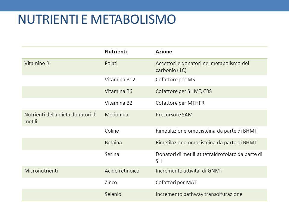 NutrientiAzione Vitamine BFolatiAccettori e donatori nel metabolismo del carbonio (1C) Vitamina B12Cofattore per MS Vitamina B6Cofattore per SHMT, CBS
