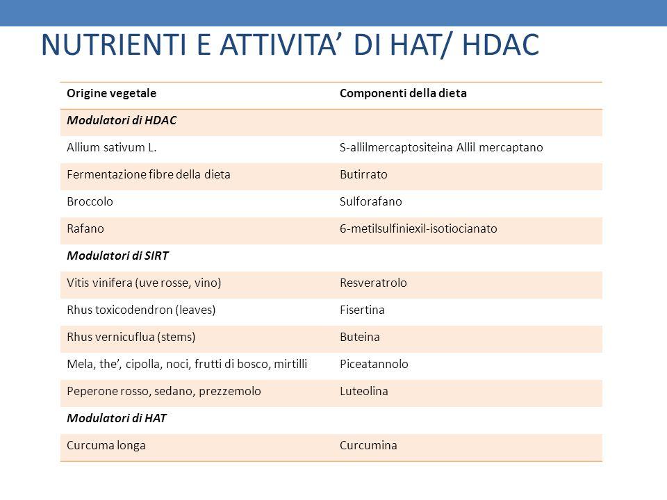 Origine vegetaleComponenti della dieta Modulatori di HDAC Allium sativum L.S-allilmercaptositeina Allil mercaptano Fermentazione fibre della dietaButi