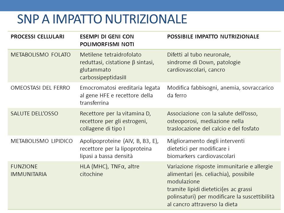 SNP A IMPATTO NUTRIZIONALE PROCESSI CELLULARIESEMPI DI GENI CON POLIMORFISMI NOTI POSSIBILE IMPATTO NUTRIZIONALE METABOLISMO FOLATOMetilene tetraidrof