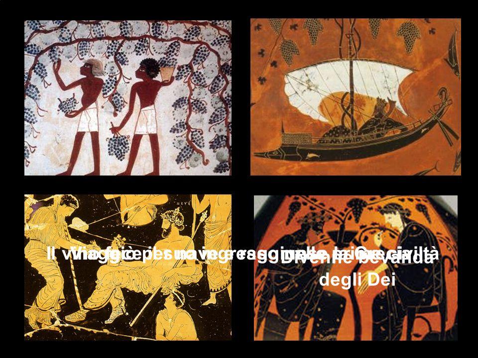 Il vino fece il suo ingresso nelle prime civiltàViaggiò per nave e raggiunse la Grecia Divenne bevanda degli Dei