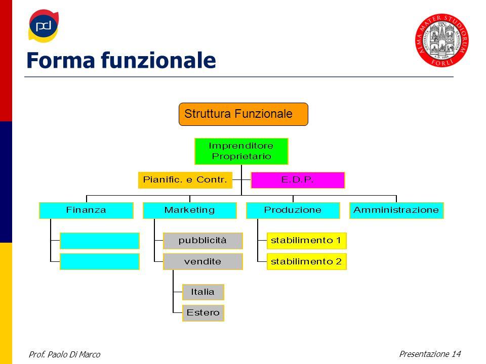 Prof. Paolo Di Marco Presentazione 14 Forma funzionale Struttura Funzionale