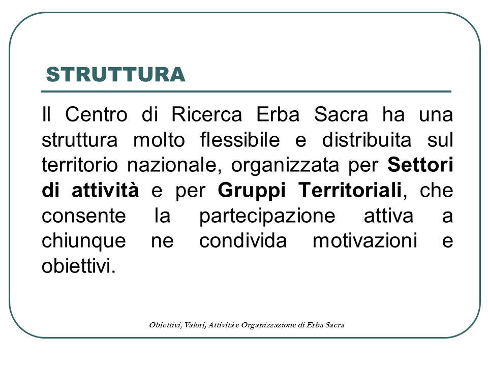 Obiettivi, Valori, Attività e Organizzazione di Erba Sacra STRUTTURA Il Centro di Ricerca Erba Sacra ha una struttura molto flessibile e distribuita s