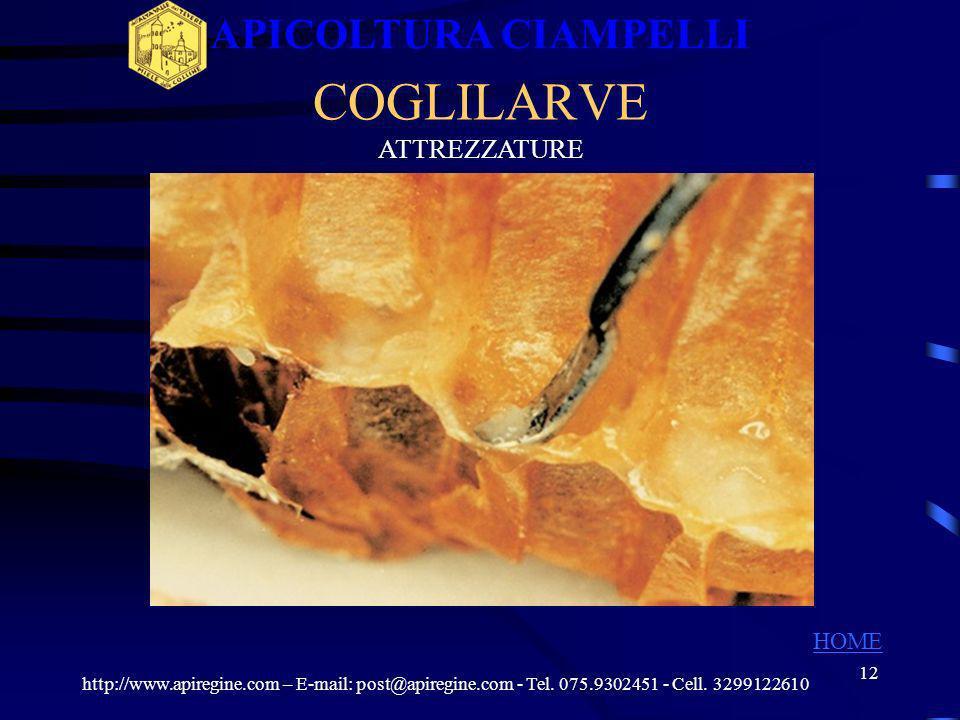 11 ATTREZZATURE PER NIDO http://www.apiregine.com – E-mail: post@apiregine.com - Tel. 075.9302451 - Cell. 3299122610 APICOLTURA CIAMPELLI HOME