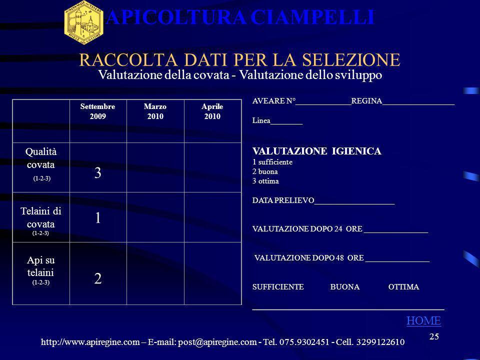 24 CONTROLLO DELLA TENDENZA ALLA SCIAMATURA APICOLTURA CIAMPELLI APIARIO 1 APIARI http://www.apiregine.com – E-mail: post@apiregine.com - Tel. 075.930